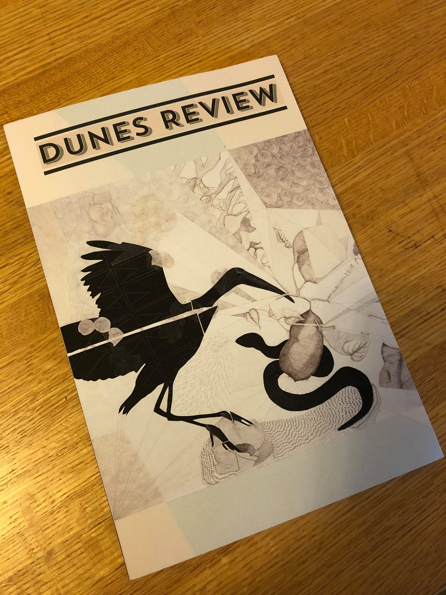Dunes Review cover