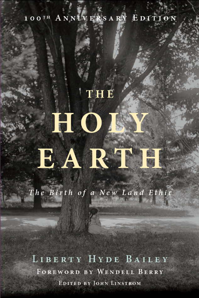 The Holy Earth - cover art
